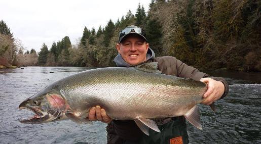 Steelhead fishing for Bobber fishing for steelhead